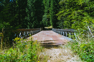 Bridge in Mt. Saint Helens Woods