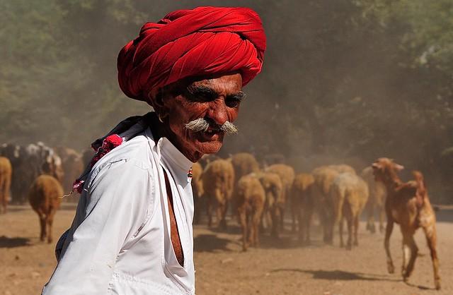 India-Rajasthan- Korta