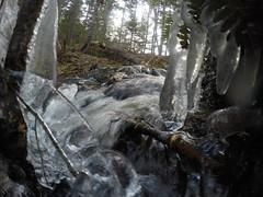 Hobsons Lake Trail