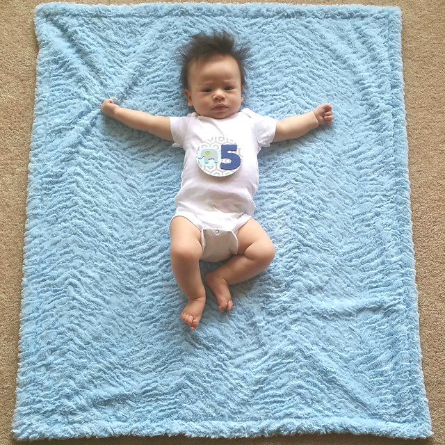 Parker's Five Month Photo | shirley shirley bo birley Blog