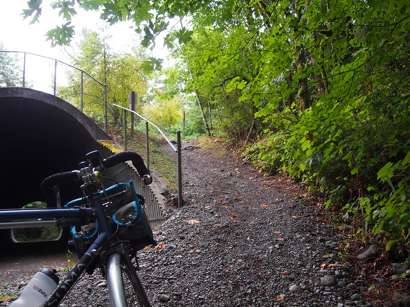 Climb up to NE Tokul Rd: The Snoqualmie Valley Trail forces users to go along this steep grade composed of rocks and large pieces of gravel.  It's much harder going up, as you can imagine.