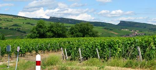 Vinzelles-Fuissé: vineyards, roches de Solutré et Vergisson