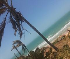 Verdes mares bravios... #BlogAuroradeCinemaviagens #canoaquebrada #ceara #coqueiros #praia #mar #paisagemnatural #falesias