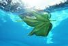 Green leaf submerged.