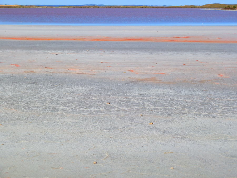 Pink Lake Patterns along the Coorong, South Australia