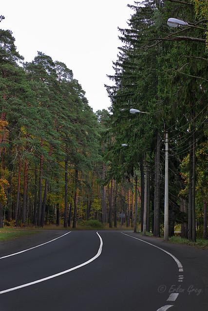 autumn_roads_16