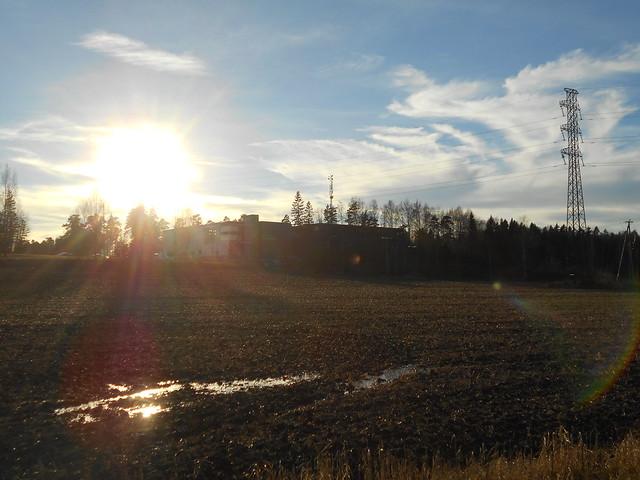 Iltapäivän auringonpaistetta ja lätäkkö ennätyslämpimässä Föhntuulessa, 3.11.2015 Espoo Leppäsilta