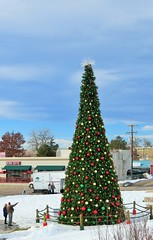 The Castle Rock Christmas Tree