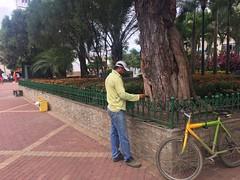 Realizan desbroce de malezas en áreas verdes municipales