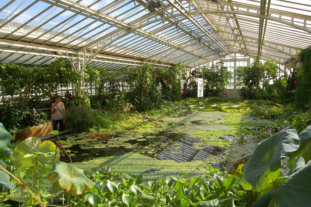 m nchen schloss nymphenburg 50 botanischer garten. Black Bedroom Furniture Sets. Home Design Ideas