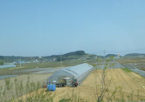 Co-Gangneung-Sokcho-Bus (3)