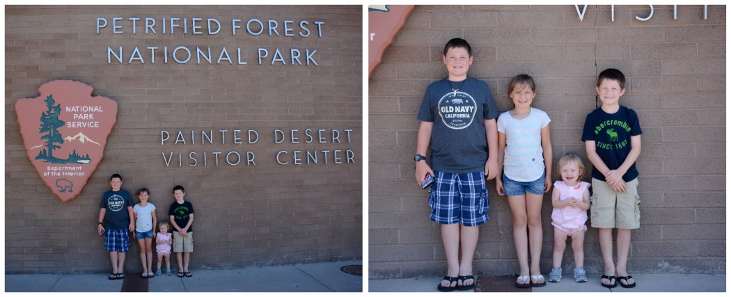 sweethearts at the petrified forest