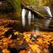 Autumn Streaks by Andrew Kumler