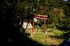 Photo:十日森稲荷神社 - 東京都西多摩郡奥多摩町小丹波 By mossygajud