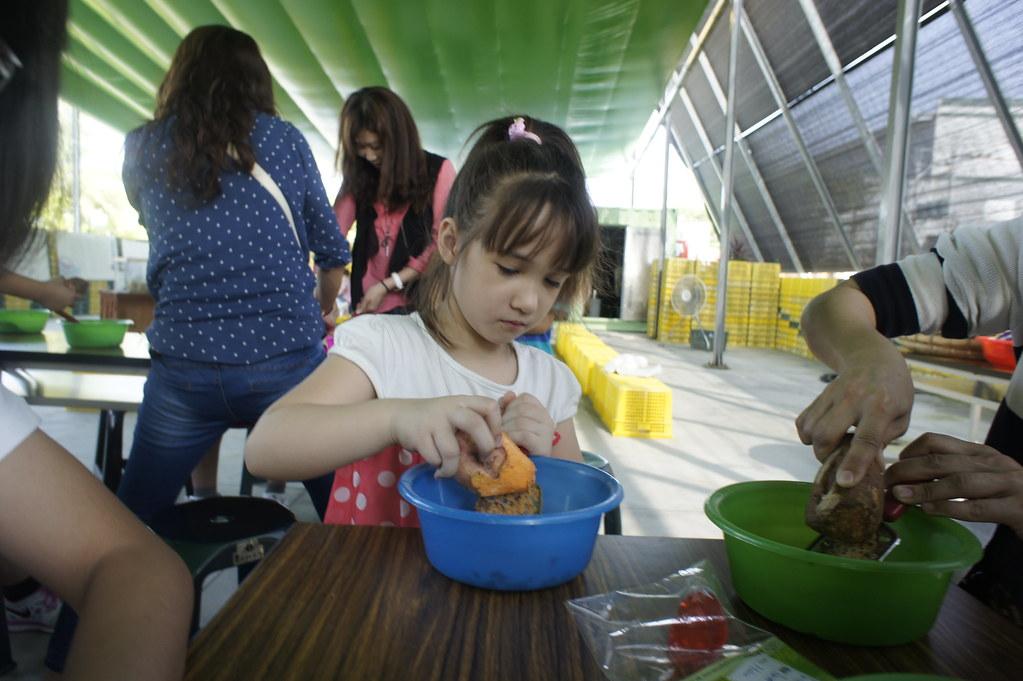 台南市新化區瓜瓜園生態故事館 (31)