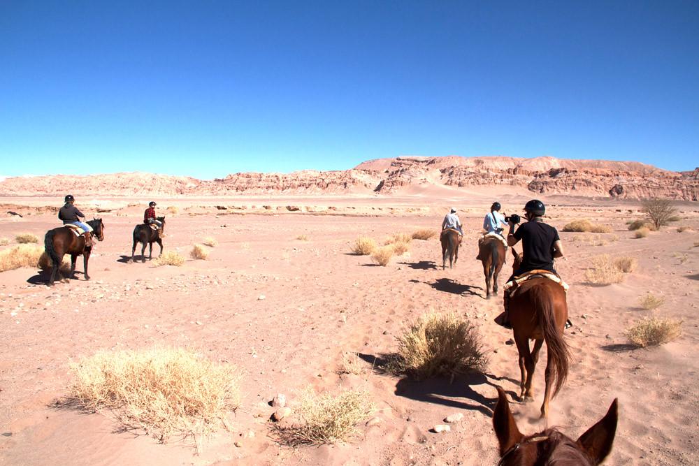 cheval Atacama2