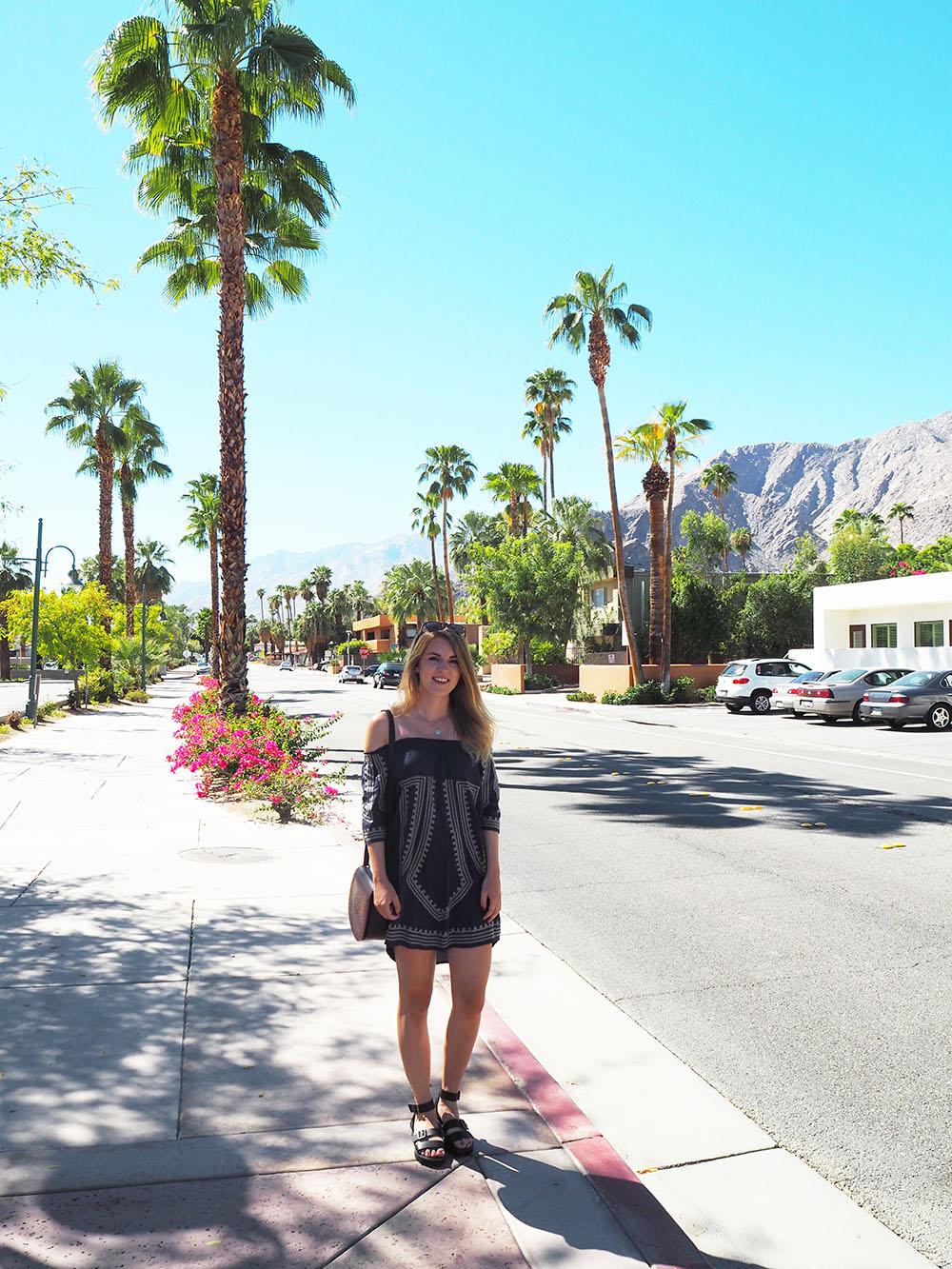 Palm Springs 13