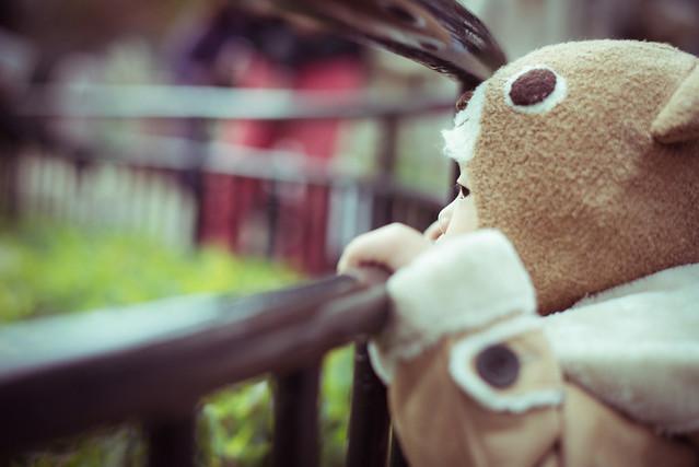 吉祥寺の井の頭自然文化園にある動物園