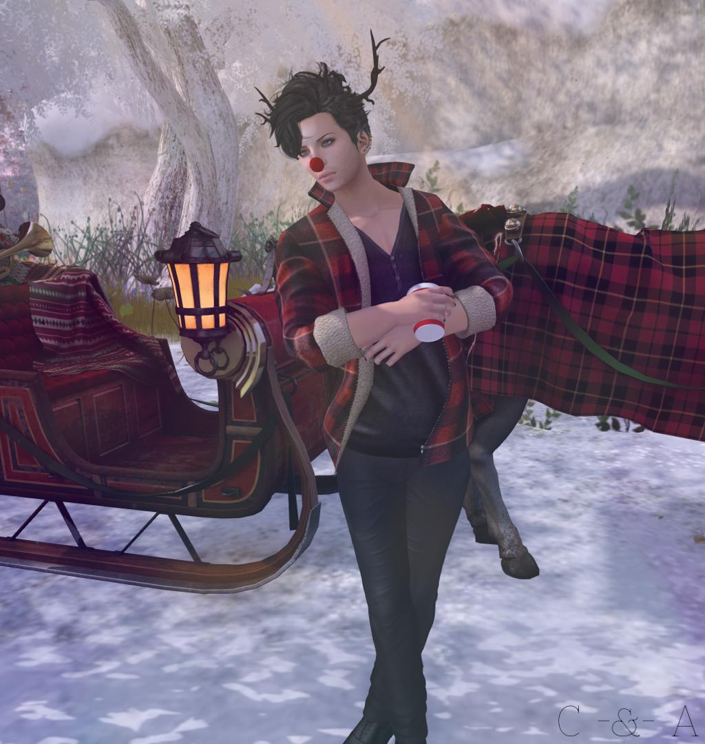 Snowfight 1