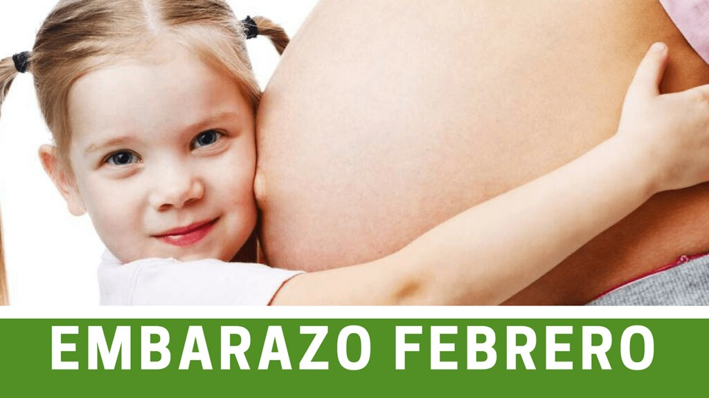 Cuando Cobro Asignacion por Embarazo Febrero 2017