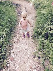 Sences scavenger hunt hike at fairlands reg. park!