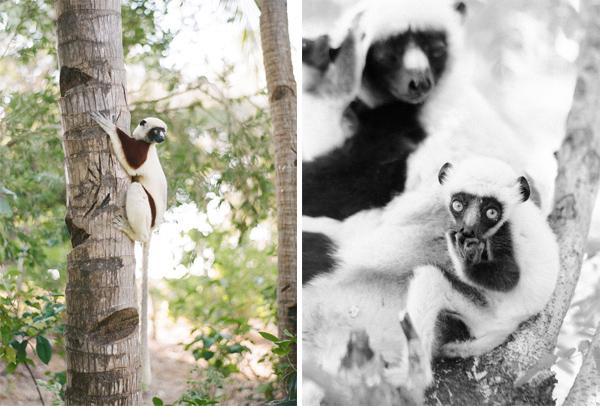 RYALE_Madagascar_Blog3_038