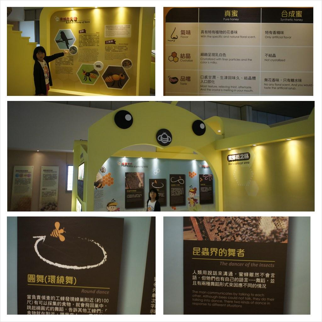 台南東山鄉東和蜂文化觀光工廠 (87)