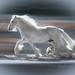 The White Stallion by ♞Jenny♞