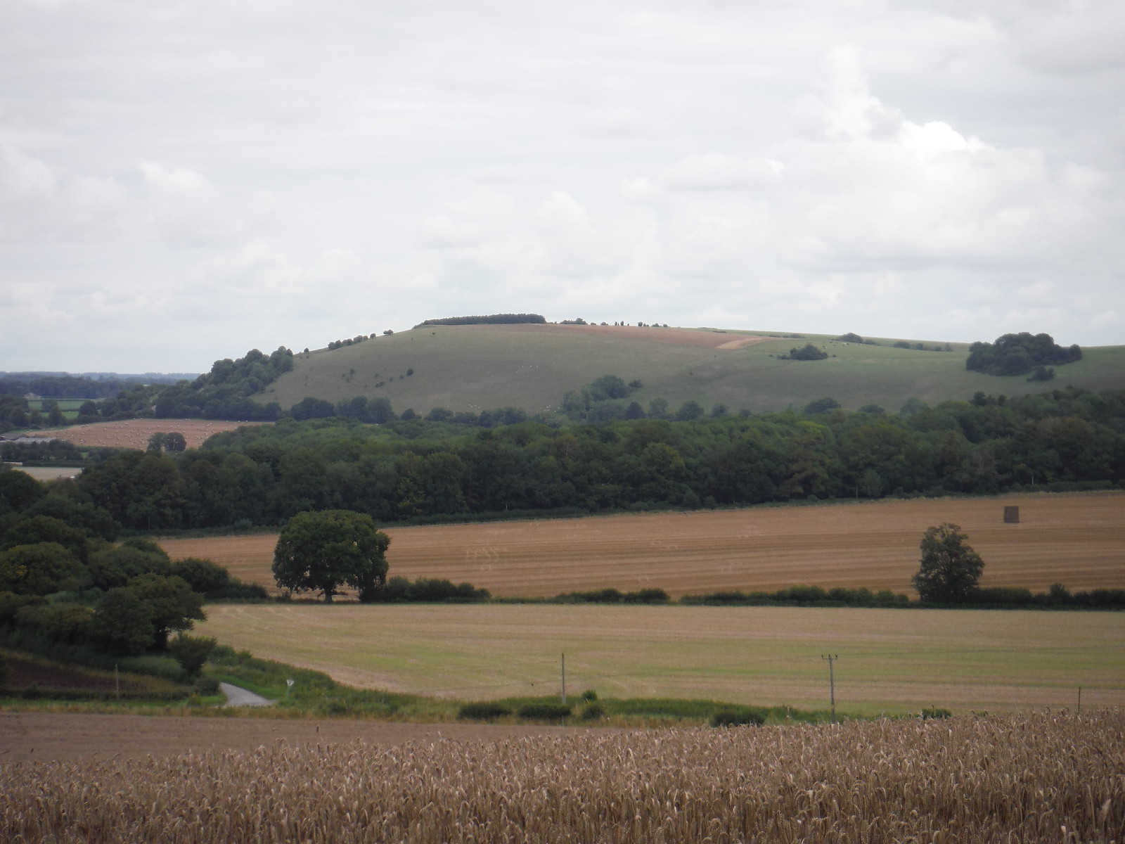 White Sheet Hill from Peckons Hill SWC Walk 251 Tisbury Circular via Ludwell and Berwick St. John