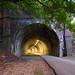 Hempfield Railroad Tunnel No. 1 by devb.