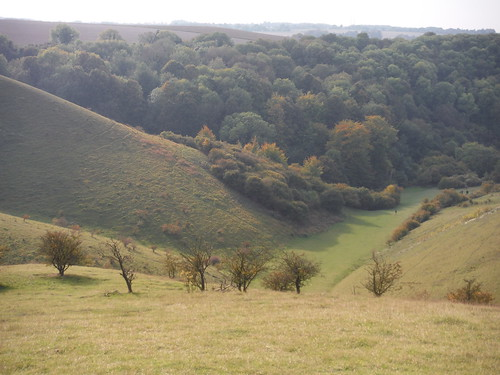 Lee Wood and Valley, Barton Hills