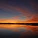 Morning Beauty by Lakeside Dweller