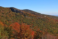 Blue Ridge Parkway Fall Color 10/13/15