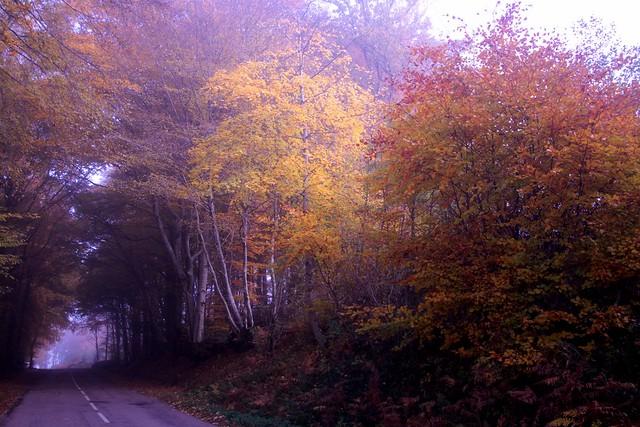 Herfst in de Morvan...