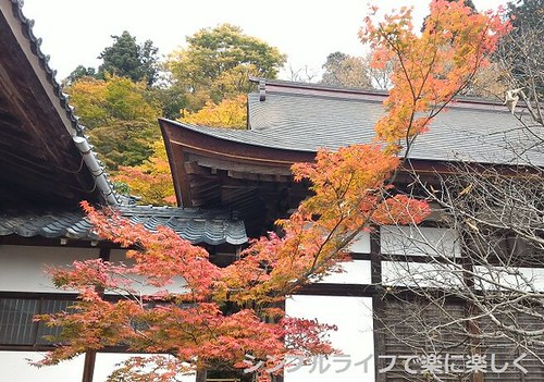 百済寺、庭園