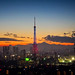 Tokyo Tower with Mt. Fuji at Sunset by どこでもいっしょ
