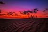 Joys of dusk
