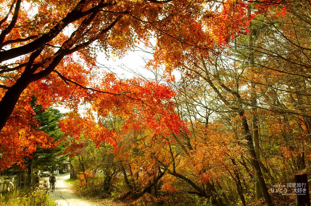 秋遊日本-Part1