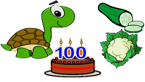 Do You Know Why Tortoises Can Live Upto 100 Years?
