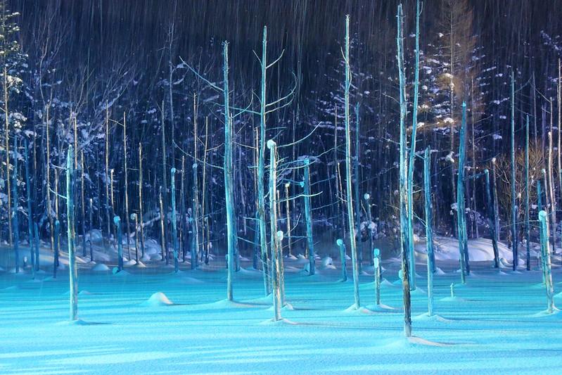 The Blue Pond of Biei