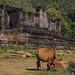 Laos_2016_17-151