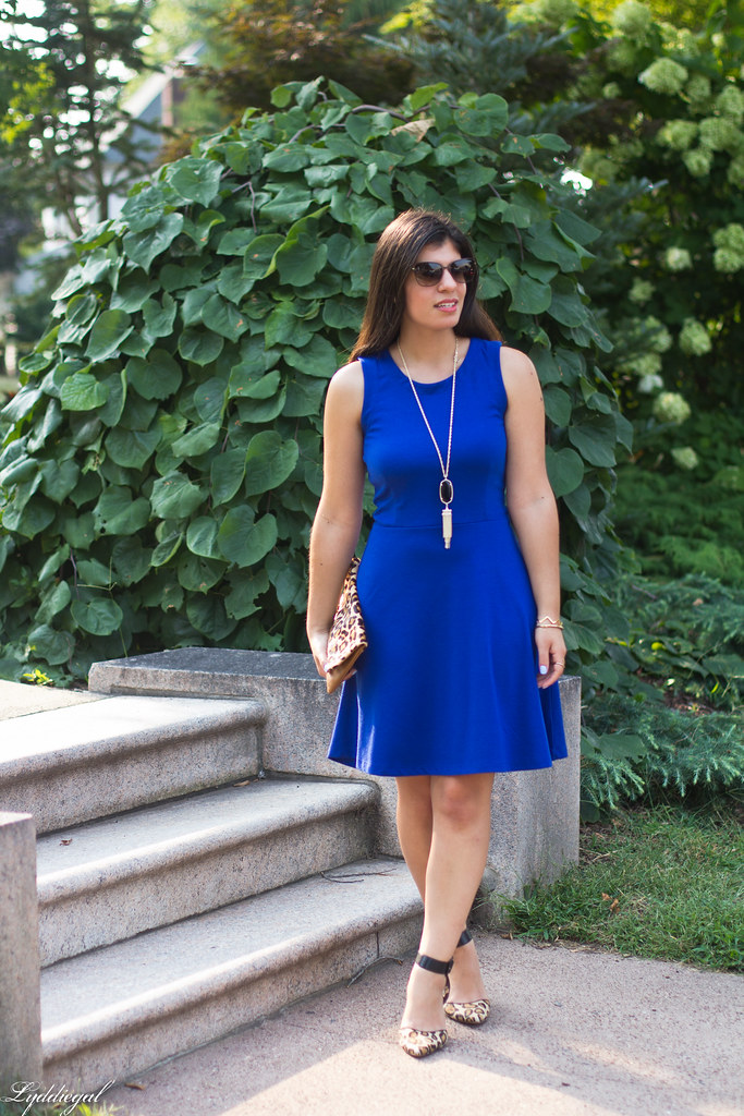 cobalt dress, leopard pumps and clutch-1.jpg
