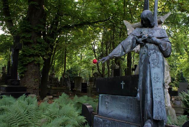 CimetièrePowazki à Varsovie : Statue austère tenant une fleur rouge devant un parterre de fougères.