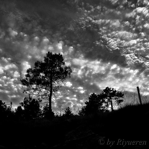 Il suono del cielo