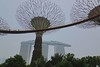 Supertree grove with OCBC skywalk and Marina Bay Sands hotel in the Gardens by the Bay in Singapore by UweBKK (α 77 on )