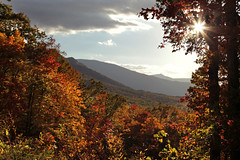 Great Smoky Mts NP Area