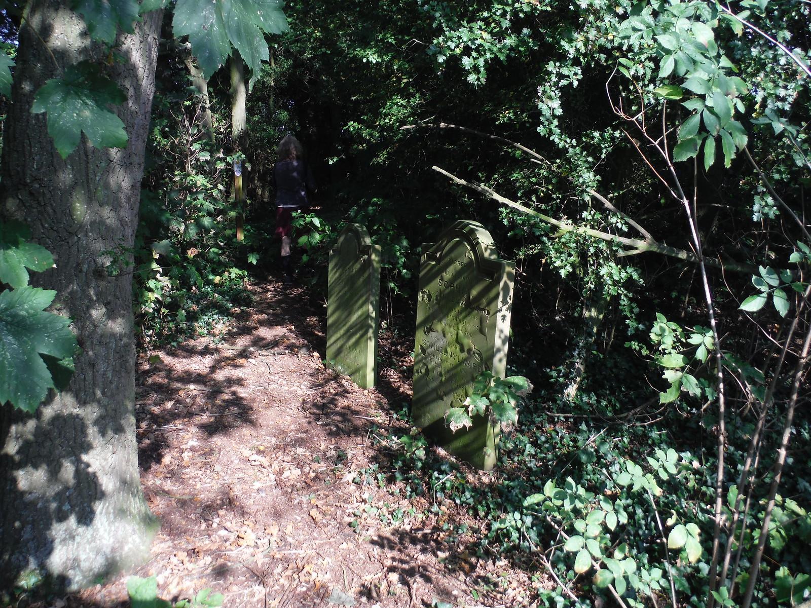 The Old Churchyard, East Hanningfield (III) SWC Walk 159 South Woodham Ferrers to North Fambridge