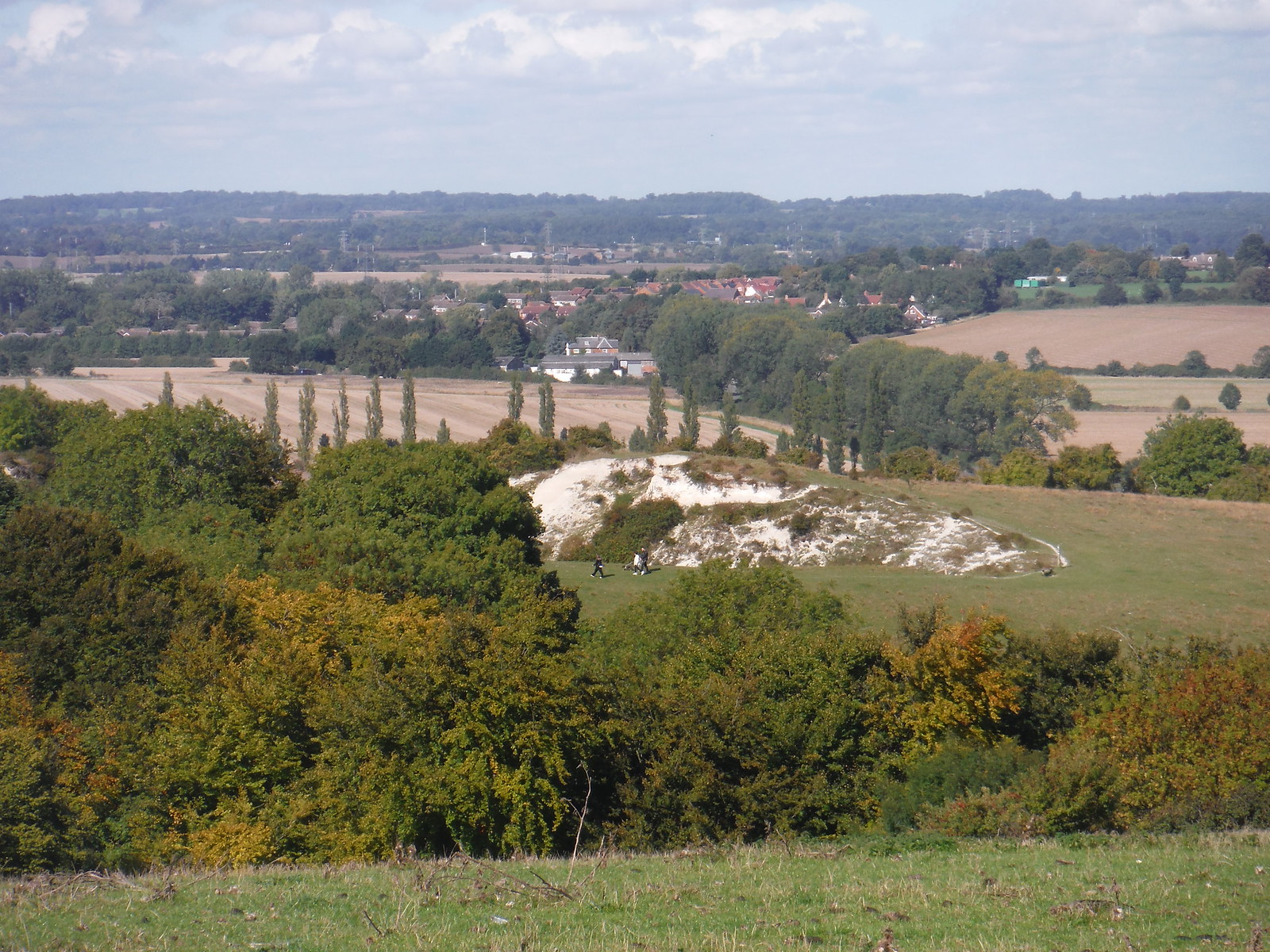 Old Chalk Pit on Sundon Hills SWC Walk 230 Harlington to Flitwick