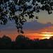 Vicky Park Sunset by Dave Gorman