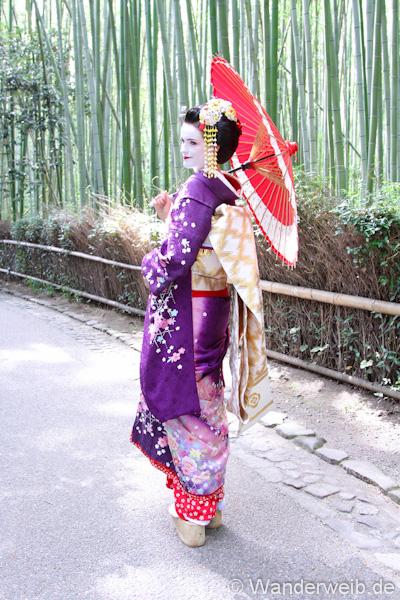 geisha (17 von 4)